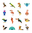 Exotic Birds Set vector image vector image