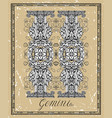 gemini or twins zodiac sign on frame on texture vector image vector image