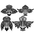 owl birds vector image