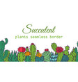 succulents seamless border pattern cacti green vector image vector image