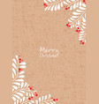 white leaves and red berries on brown paper vector image
