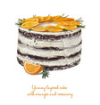yummy layered cake with oranges and rosemary vector image vector image