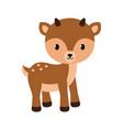 adorable little deer in flat vector image