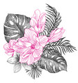 hand drawn flowers and leaves of tropical plants vector image