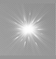 light flare special vector image vector image