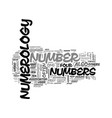 what is numerology text word cloud concept vector image vector image