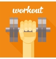 sport workout dumbbell in vector image