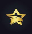 star eagle gold logo vector image