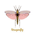 card with beautiful dragonfly vector image vector image