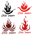 Chile Pepper vector image vector image