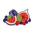 confectionery berries color vector image vector image