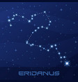 constellation eridanus river night star sky vector image vector image