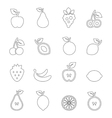 Fruit outline vector image vector image