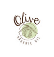 organic olive oil label with olive on a branch vector image vector image