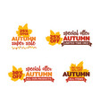 set autumn super sale typography badge with vector image vector image