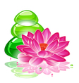 spa background with a lotus flower and transparent vector image