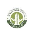 cane sugar emblem vector image