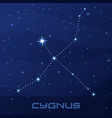 constellation cygnus swan night star sky vector image vector image