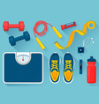 convenient equipment for fitness set vector image