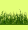 grass and leaves seamless vector image
