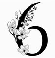 hand drawn floral number six monogram and vector image vector image