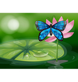 A blue butterfly and the pink flower at the pond vector image vector image