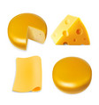 cheese various types collection set vector image