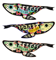 colorful fishes vector image vector image