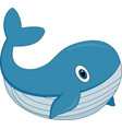 cute cartoon whale on white background vector image vector image