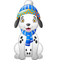 dalmatian cartoon dog wearing a winter hat and sca vector image vector image
