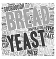 How To Make Easy Sourdough Bread text background vector image vector image