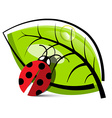 Ladybug with Leaf Isolated on White Background vector image