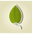 Leaf icon design