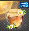 lens glow effect honey bank flowers vector image