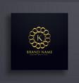 letter k premium golden logo design concept vector image vector image