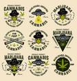 marijuana growing set nine color emblems vector image vector image
