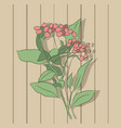 plant on the background of a wooden wall vector image