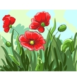 red poppies painted by hand grow on the field with vector image vector image
