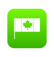 canada flag with flagpole icon digital green vector image vector image
