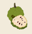 Custard apple vector image