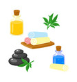 set of spa salon accessories - hot stones massage vector image vector image