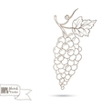 Sketch of bunch of grapes vector image