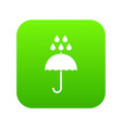 umbrella and rain drops icon digital green vector image vector image