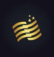 stripe flag star gold logo vector image