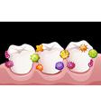 Bacteria in human teeth vector image