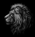 lion black and white graphic portrait a lion vector image