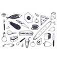 set of hand drawn food isolated vector image vector image