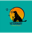 veterinary cat and dog with tree vector image vector image
