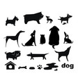 funny dog silhouettes vector image