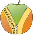 Orange peel vector image